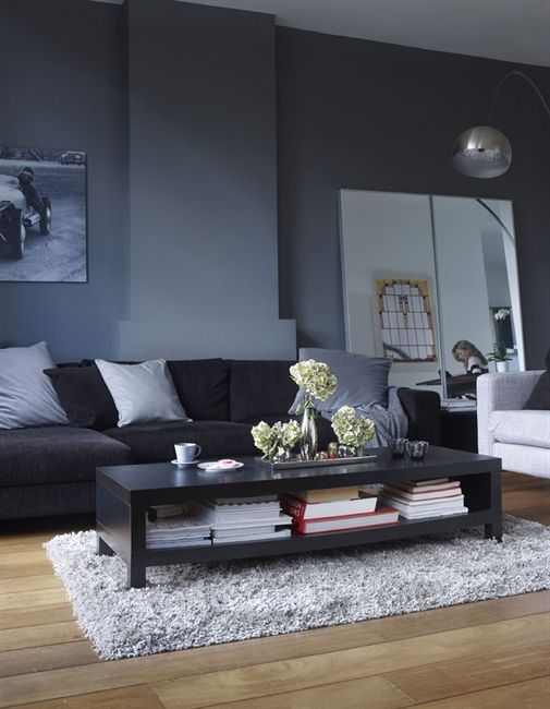 grey lounge with grey velour sofa and cushions and wooden flooring. :)