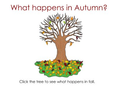 Fall - Information and links to describe the season of fall  Resource type: SMART Notebook lesson  Subject: Science  Grade: Kindergarten,  Grade 1