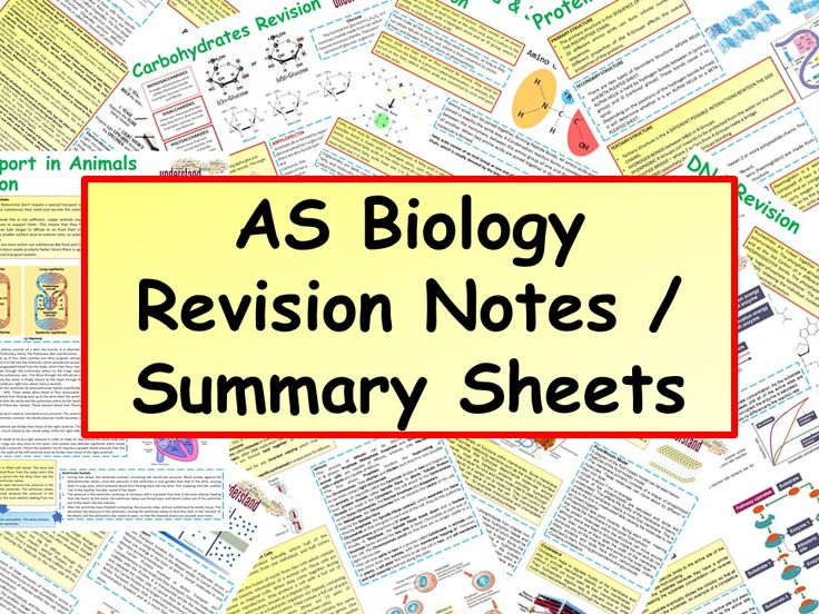 AS Biology Revision Notes / Summary Sheets