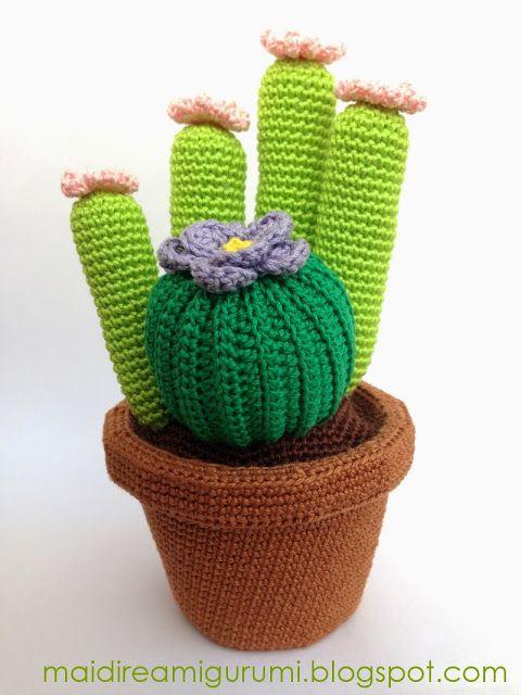 Cactus & crocheted vase