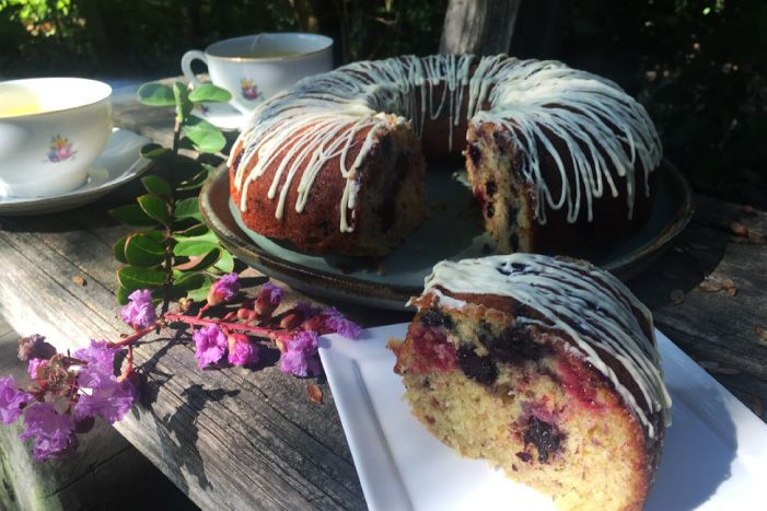 Disfrutando de un rico queque de vainilla con berries al aire libre. Las mejores recetas de cosas dulces con berries para la hora del té.