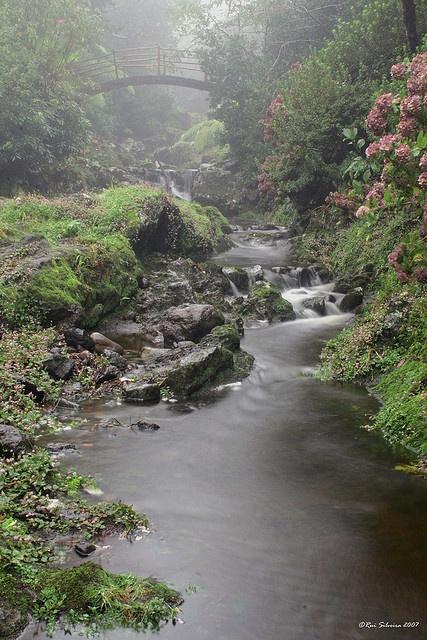 Silveira park, #S. Jorge, # Azores