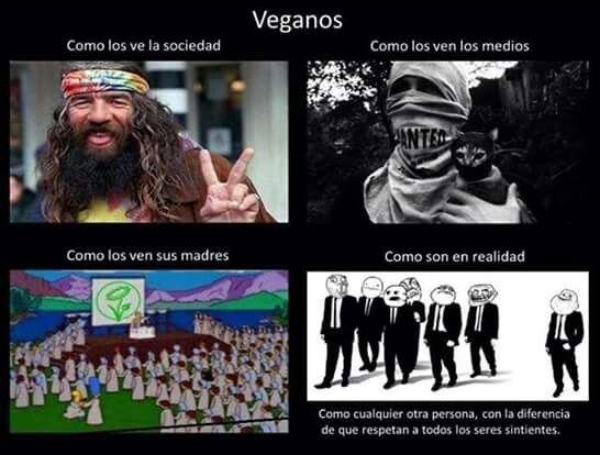 Humor vegano