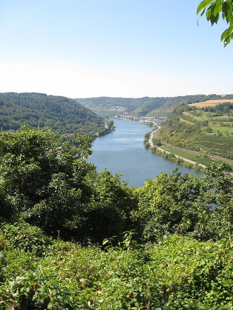 Mosel River - Germany  Was here in 1988( aprox.) with good friends Tom and Maria. Should have been a tent trip for two weeks. Think we slept in tents one night. Great trip though.