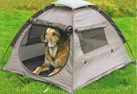 Gatti & Cani di Casa: In tenda, in roulotte o in bungalow?