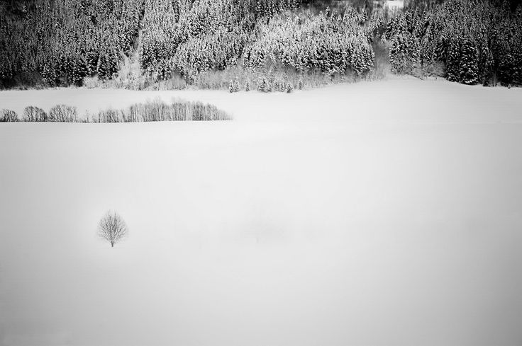 Alone in the white by Aziz Nasuti on 500px