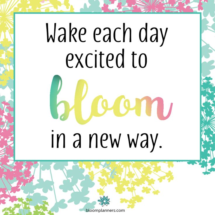 Each And Every Day Is A Chance To Improve Yourself: 17 Best Ideas About New Day Motivation On Pinterest