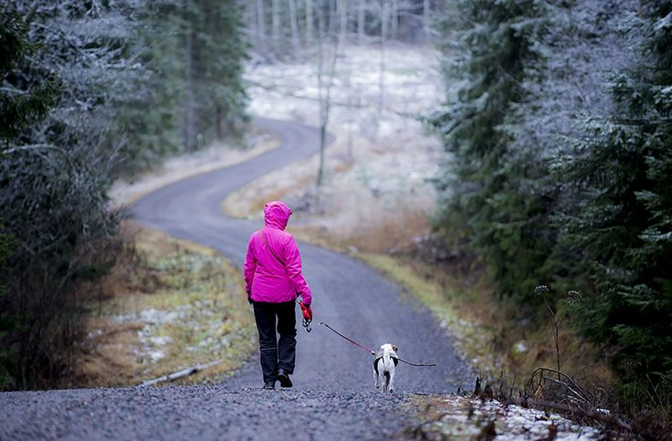 Kytäjä-Usmi recreation area, Hyvinkää