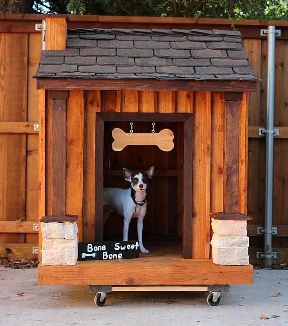 14 best incredible dog house architecture images on for Architecture and design dog house