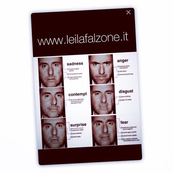 Leila Falzone: Consulenza Organizzativa Risorse Umane Relazioni Sindacali Business Coach Coaching Strategico Formazione aziendale  www.leilafalzone.it