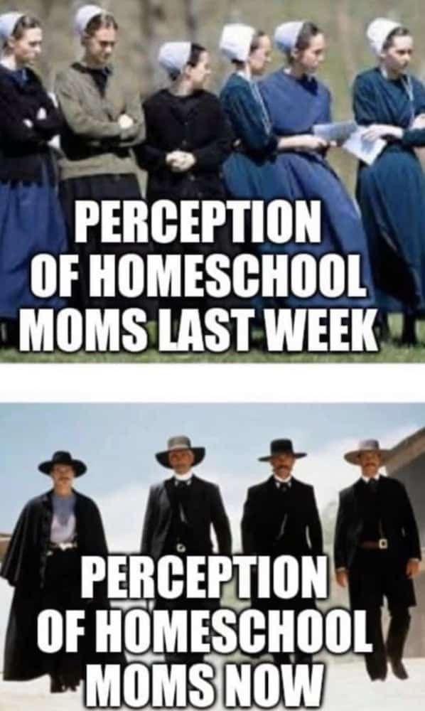 Homeschool Memes Funny Remote Learning Memes For 2020 In 2020 Homeschool Memes Homeschool Mom Humor Homeschool Mom