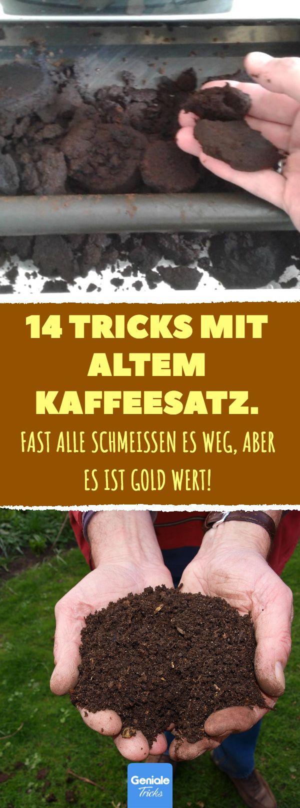 14 Tricks mit altem Kaffeesatz. 14 nützliche Recy…