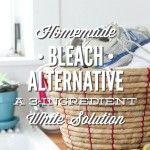 Homemade bleach alternative: natural whitening solution