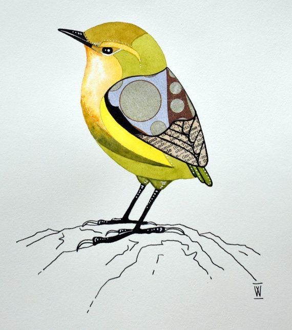 Rock Wren : original bird watercolour and collage painting