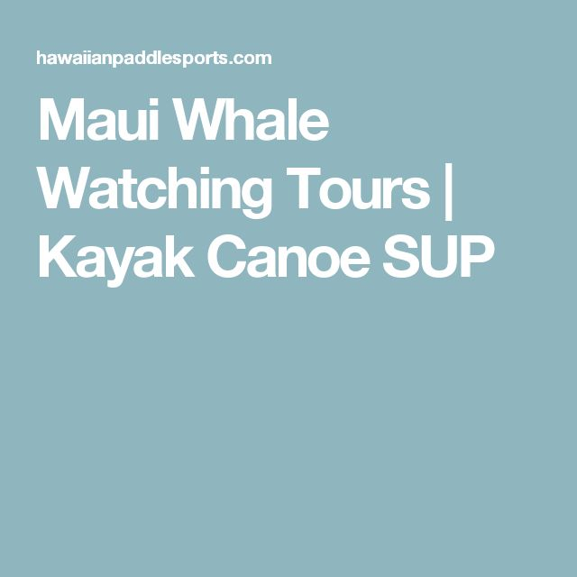 Maui Whale Watching Tours | Kayak Canoe SUP