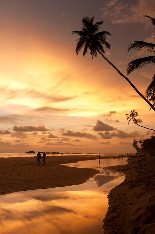 Hikkaduwa, Sri Lanka: This weekend, we just want to get away from it all and go relax on the beaches of this small coastal town.