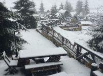 (Foto) Ninge frumos în România. 11 fotografii care îți arată că te-ai grăbit cu ghioceii :)