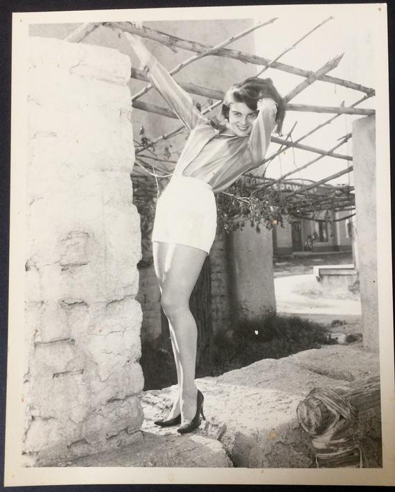 "ANN MARGRET 8/"" X 10/"" glossy photo reprint"