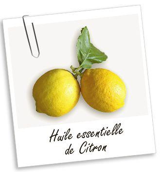 Huile essentielle Citron : Purifiante, cette huile est utilisée pour le soin des peaux grasses, pour l'amincissement et pour renforcer les ongles cassants. Sa senteur fine et fruitée et ses propriétés toniques et purifiantes la rendent très agréable en diffusion.