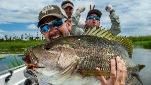 GEOBASS: Black Bass in Papua New Guinea