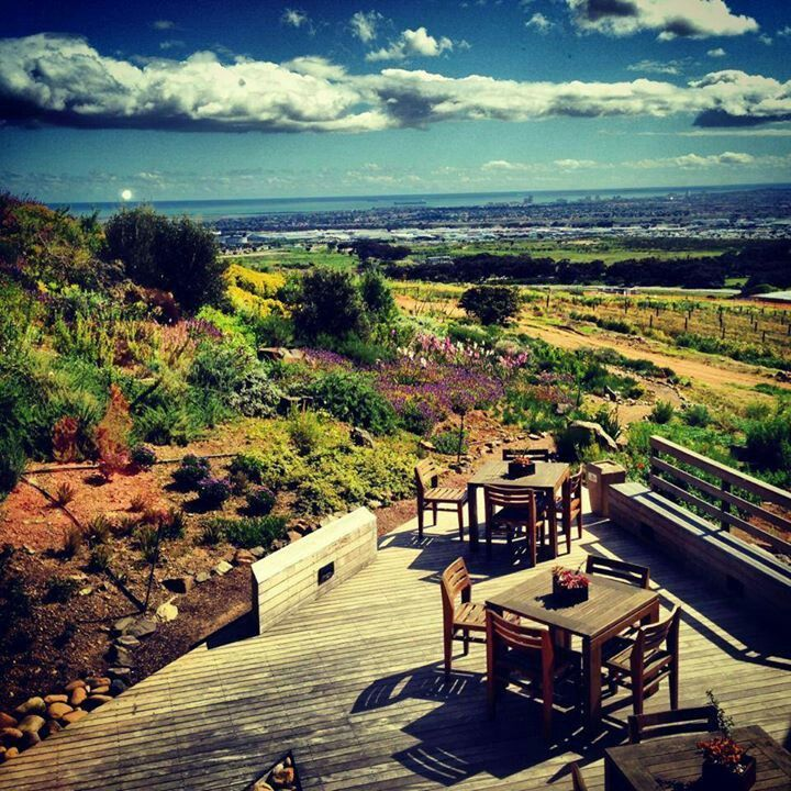 Durbanville Hills Wine Estate - views of Cape Town
