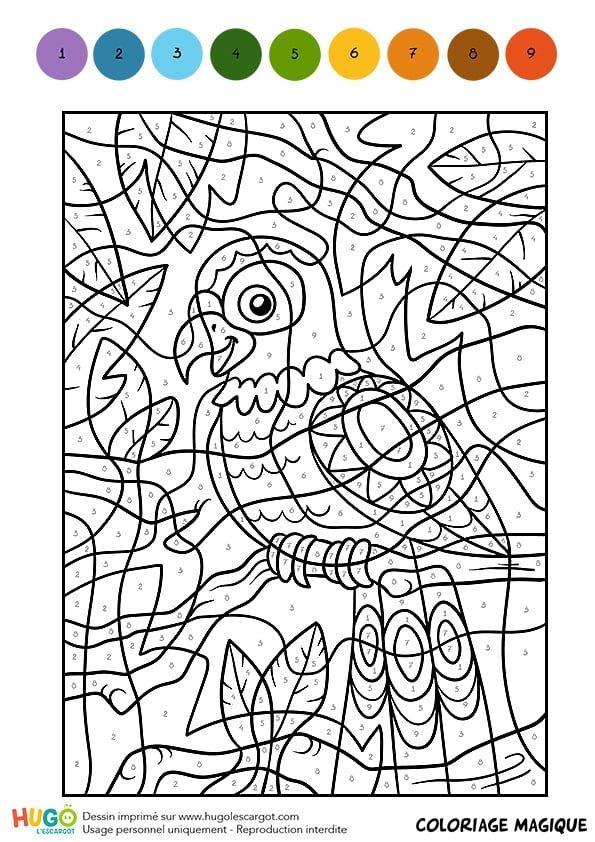 Coloriage Magique Oiseau.Coloriage Et Illustration D Un Coloriage Magique Cm1 Une Perruche
