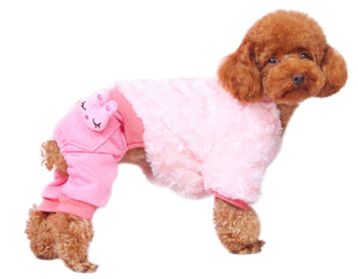 Pet's House Dog Clothes Fall and Winter Clothes Teddy Legs Warm Clothing Pomeranian Chihuahua Puppy Pet Clothing Bichon Frise ** Special dog product just for you. See it now! : Dog Dresses