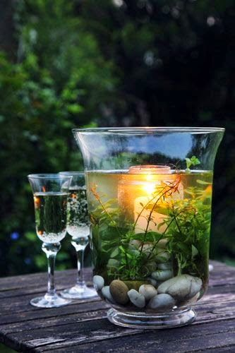 I like this for an outdoor party, you could even submerge some cut flowers instead of plants, party decor, table decor.