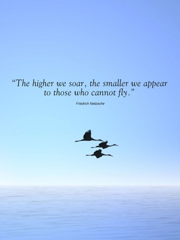 So, I ask myself, how do we show those who can't fly how to fly? It seems to me we must start by being on the ground where they are.