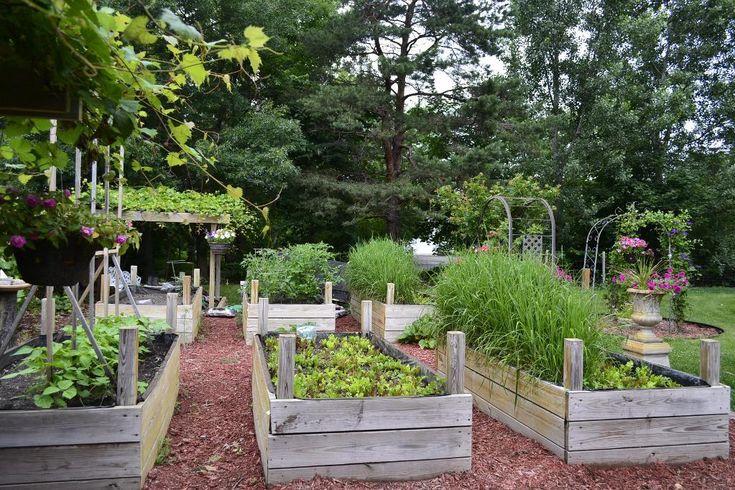 raised garden bedsGardens Ideas, Rai Beds Gardens, Raised Bed Gardening, Gardens Design Ideas, Raised Beds Gardens, Raised Gardens Beds, Rai Gardens Beds, Dreams Gardens, Raised Garden Beds