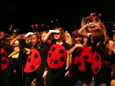 lady bug costumes