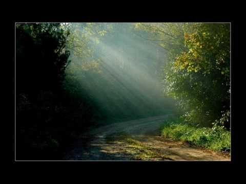 Wass Albert: Erdők könyve II. rész - YouTube