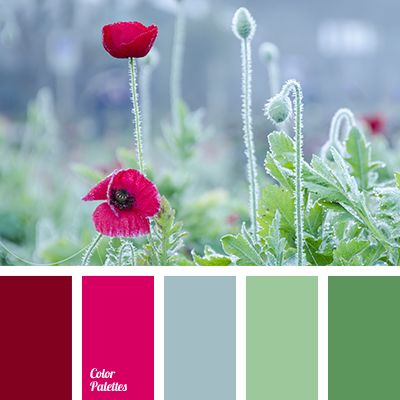 brick red, burgundy, color of red poppy, dark green, dark red, flower stalks, grass color, green, green stems color, green with a hint of blue, intense green, interior color selection, muted red, pastel green, poppies, purple-red color, red and green, red color, shades of green, wine.