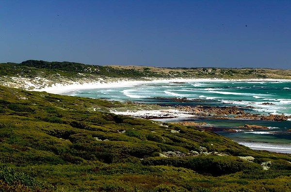 King Island, Tasmania. This small island off the north of Tasmania produces some of the best brie and soft cheeses in Australia. It's an island of long, empty beaches and clean, fresh air, offshore reefs, rocky coasts, lighthouses and more than 70 shipwreck sites. #KingIslandWed