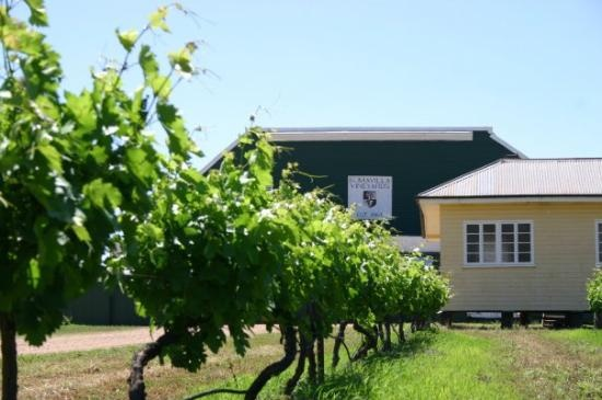 Romavilla Winery [established 1863] Queensland's oldest winery http://www.romavilla.com