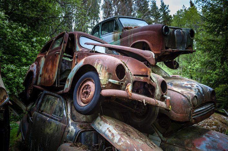 un vieux cimetiere de voitures en suede 17   Un vieux cimetière de voitures en Suède   voiture vintage Suède seconde guerre mondiale photo m...