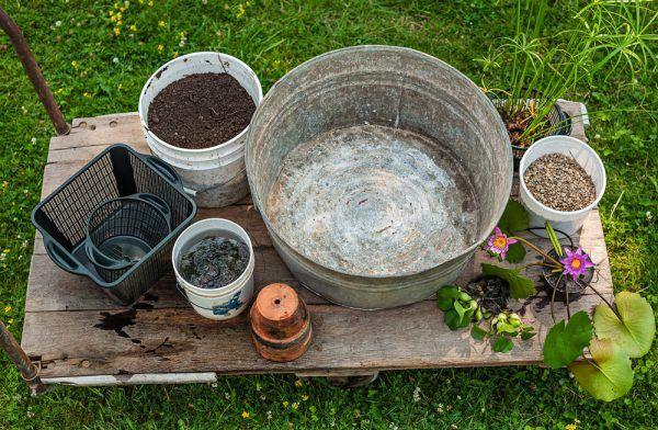 crear-un-jardin-acuatico-en-un-contenedor-0