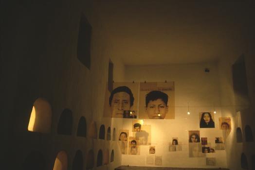 Luis Gonzalez Palma - 1996 Bienal de cuenca, Ecuador