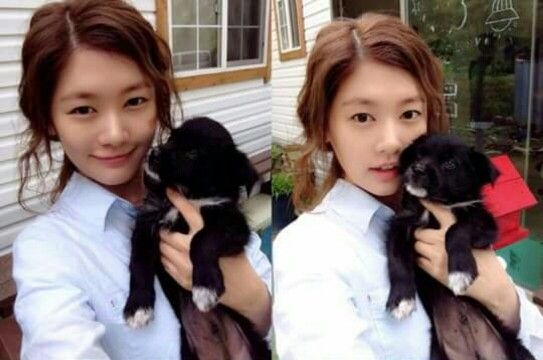 Fofa 'Jung So Min' #Dog