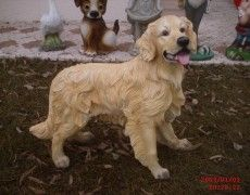 Golden Dog Statue