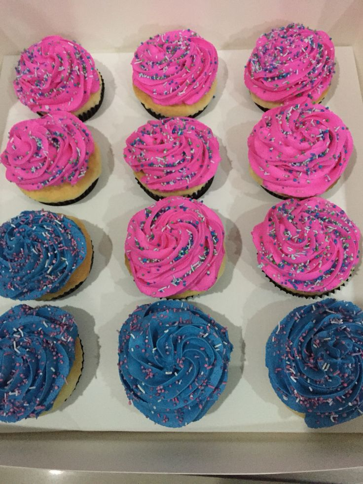 Fluro Pink and blue cupcakes
