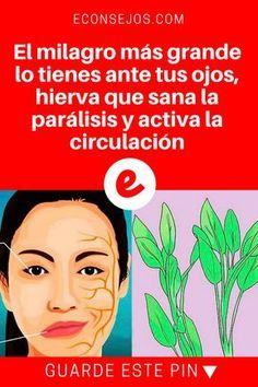 Salvia propiedades | El milagro más grande lo tienes ante tus ojos, hierva que sana la parálisis y activa la circulación | El milagro más grande lo tienes ante tus ojos, hierva que sana la parálisis y activa la circulación