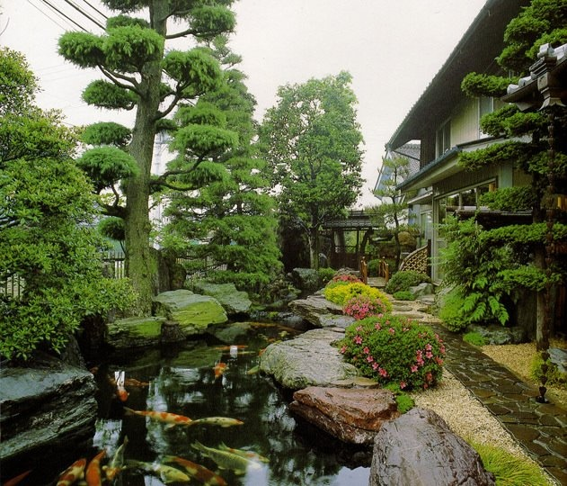 Great japanese style beautiful koi ponds pinterest for Japanese style pond