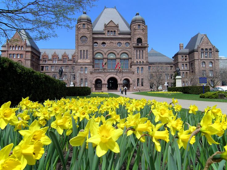 Canada's biggest city, Toronto is a cosmopolitan capital boasting four distinct seasons. Here's an introduction to the four seasons of Toronto to help you decide when to visit. http://www.escapetravel.com.au/holiday-ideas/2015/06/09/four-seasons-toronto/