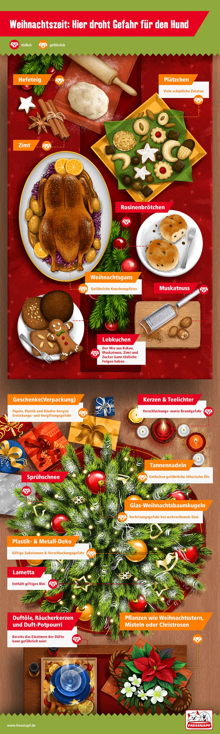 Weihnachten sicher feiern mit Hund - FRESSNAPF Deutschland