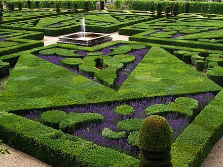 French formal garden and parterre at Château de Villandry in the Loire Valley.