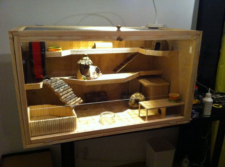 EDIT:You find the detailed step by step guide for building this hamster cage here -Building your own hamster cage step by step guide If you have seen Hazels big hamster cage in some of my posts a...