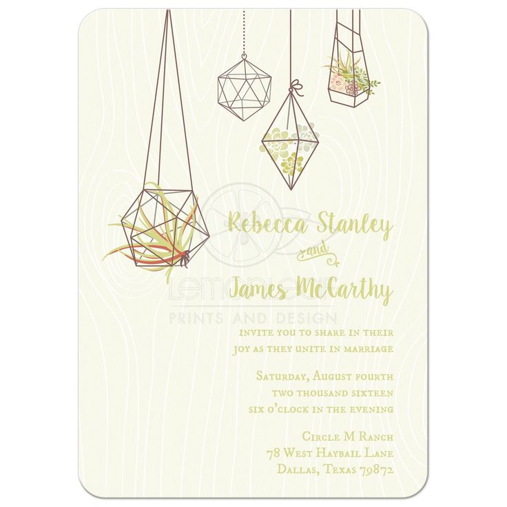 Rustic Wedding Invitations featuring some air plants and succulent terrariums on a soft green woodgrain background.