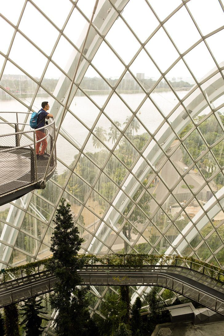 661 Best Singapore Today Images On Pinterest Amazing Tiket Garden By The Bay Anak Cloud Forest Gardens Localadventurercom