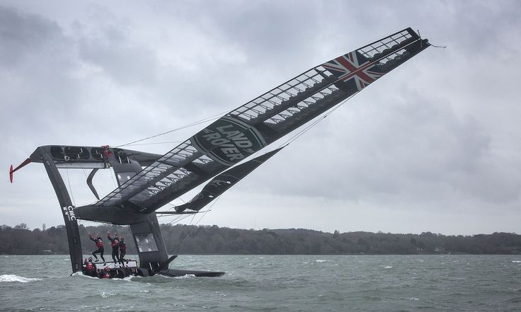 America's Cup team in mission to save Solent oysters